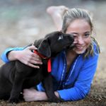 Why Labradors Make Such Great Family Pets