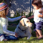 Labradors and Children: A Great Team!